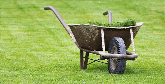 grass clippings smaller 1